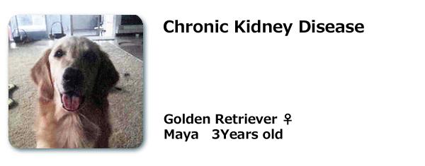 Chronic Kidney Disease Dr Raymond K Yoza Resonanthealing